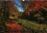 Autumn Trails (Wall Calendar 2019 DIN A3 Landscape) - Produktdetailbild 7