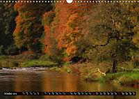 Autumn Trails (Wall Calendar 2019 DIN A3 Landscape) - Produktdetailbild 10