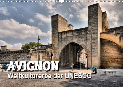 Avignon - Weltkulturerbe der UNESCO (Wandkalender 2019 DIN A3 quer), Thomas Bartruff