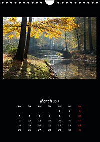 Away from the city (Wall Calendar 2019 DIN A4 Portrait) - Produktdetailbild 3