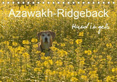 Azawakh-Ridgeback Hund in gelb (Tischkalender 2019 DIN A5 quer), Meike Bölts