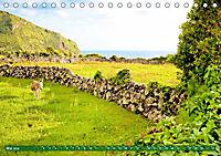 Azoren: Rauhe Schönheit im Atlantik (Tischkalender 2019 DIN A5 quer) - Produktdetailbild 5