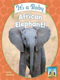 Baby African Animals: It's a Baby African Elephant!, Kelly Doudna