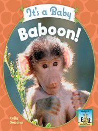 Baby African Animals: It's a Baby Baboon!, Kelly Doudna