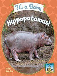 Baby African Animals: It's a Baby Hippopotamus!, Kelly Doudna