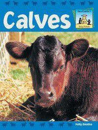 Baby Animals: Calves, Kelly Doudna