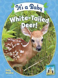 Baby Mammals: It's a Baby White-Tailed Deer, Kelly Doudna