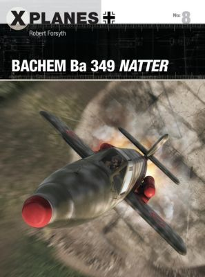 Bachem Ba 349 Natter, Robert Forsyth
