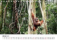 Backpacking Indonesien (Tischkalender 2019 DIN A5 quer) - Produktdetailbild 1
