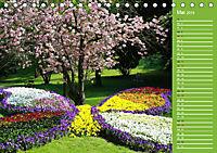 BAD WILDUNGEN - Impressionen von der Bäderstadt (Tischkalender 2019 DIN A5 quer) - Produktdetailbild 5