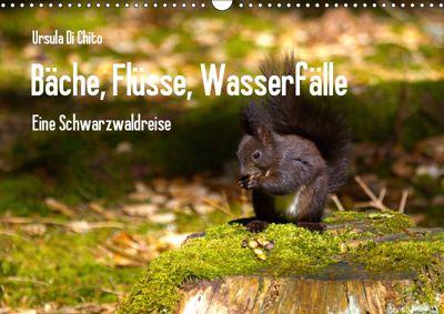 Bäche, Flüsse, Wasserfälle - Eine Schwarzwaldreise (Wandkalender 2019 DIN A3 quer), Ursula Di Chito