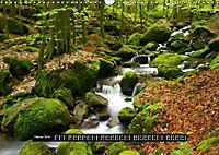Bäche, Flüsse, Wasserfälle - Eine Schwarzwaldreise (Wandkalender 2019 DIN A3 quer) - Produktdetailbild 2