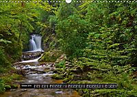 Bäche, Flüsse, Wasserfälle - Eine Schwarzwaldreise (Wandkalender 2019 DIN A3 quer) - Produktdetailbild 10
