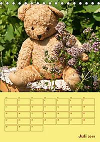 Bärenstarker Planer für das Jahr - Teddys (Tischkalender 2019 DIN A5 hoch) - Produktdetailbild 7