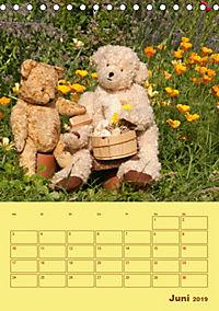 Bärenstarker Planer für das Jahr - Teddys (Tischkalender 2019 DIN A5 hoch) - Produktdetailbild 6