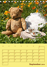 Bärenstarker Planer für das Jahr - Teddys (Tischkalender 2019 DIN A5 hoch) - Produktdetailbild 9