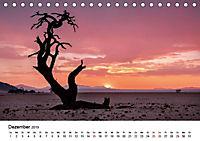 Bäume in Namibias Landschaften (Tischkalender 2019 DIN A5 quer) - Produktdetailbild 7