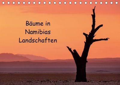 Bäume in Namibias Landschaften (Tischkalender 2019 DIN A5 quer), Anne Berger