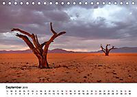 Bäume in Namibias Landschaften (Tischkalender 2019 DIN A5 quer) - Produktdetailbild 9