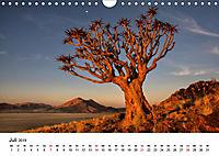 Bäume in Namibias Landschaften (Wandkalender 2019 DIN A4 quer) - Produktdetailbild 7