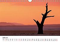 Bäume in Namibias Landschaften (Wandkalender 2019 DIN A4 quer) - Produktdetailbild 6