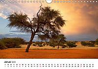 Bäume in Namibias Landschaften (Wandkalender 2019 DIN A4 quer) - Produktdetailbild 1