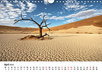 Bäume in Namibias Landschaften (Wandkalender 2019 DIN A4 quer) - Produktdetailbild 4