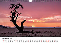 Bäume in Namibias Landschaften (Wandkalender 2019 DIN A4 quer) - Produktdetailbild 12