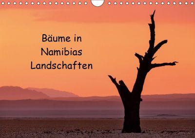 Bäume in Namibias Landschaften (Wandkalender 2019 DIN A4 quer), Anne Berger