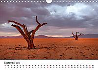 Bäume in Namibias Landschaften (Wandkalender 2019 DIN A4 quer) - Produktdetailbild 9