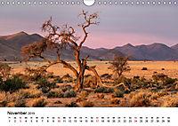Bäume in Namibias Landschaften (Wandkalender 2019 DIN A4 quer) - Produktdetailbild 11