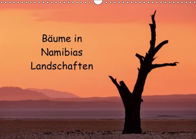 Bäume in Namibias Landschaften (Wandkalender 2019 DIN A3 quer), Anne Berger