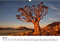 Bäume in Namibias Landschaften (Wandkalender 2019 DIN A3 quer) - Produktdetailbild 7