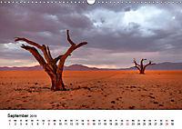 Bäume in Namibias Landschaften (Wandkalender 2019 DIN A3 quer) - Produktdetailbild 9