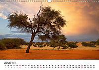 Bäume in Namibias Landschaften (Wandkalender 2019 DIN A3 quer) - Produktdetailbild 1