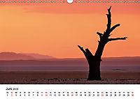 Bäume in Namibias Landschaften (Wandkalender 2019 DIN A3 quer) - Produktdetailbild 6