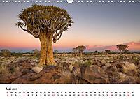 Bäume in Namibias Landschaften (Wandkalender 2019 DIN A3 quer) - Produktdetailbild 5