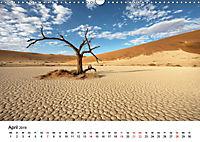 Bäume in Namibias Landschaften (Wandkalender 2019 DIN A3 quer) - Produktdetailbild 4