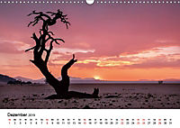 Bäume in Namibias Landschaften (Wandkalender 2019 DIN A3 quer) - Produktdetailbild 12