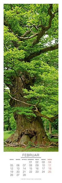 Bäume Panoramakal. 2018 - Produktdetailbild 2