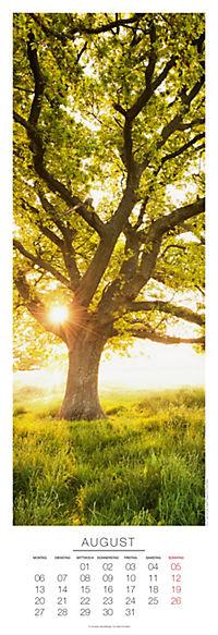 Bäume Panoramakal. 2018 - Produktdetailbild 8