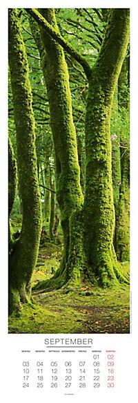 Bäume Panoramakal. 2018 - Produktdetailbild 9