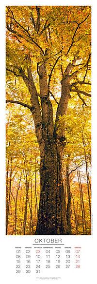 Bäume Panoramakal. 2018 - Produktdetailbild 10