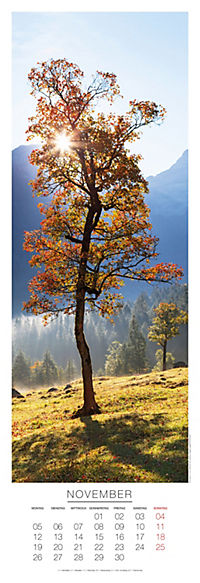 Bäume Panoramakal. 2018 - Produktdetailbild 11