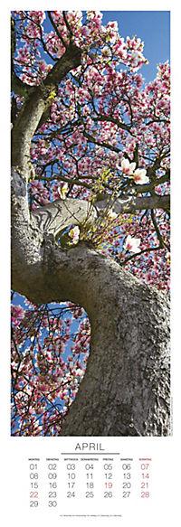 Bäume Panoramakal. 2019 - Produktdetailbild 4