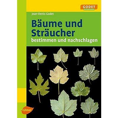 Gemeinsame Bäume und Sträucher bestimmen und nachschlagen Buch portofrei #FA_64