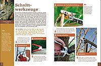Bäume und Sträucher richtig schneiden - Produktdetailbild 5