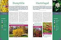 Bäume und Sträucher richtig schneiden - Produktdetailbild 3