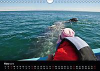 Baja California - Impressionen der mexikanischen Halbinsel (Wandkalender 2019 DIN A4 quer) - Produktdetailbild 3