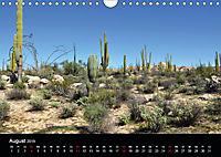 Baja California - Impressionen der mexikanischen Halbinsel (Wandkalender 2019 DIN A4 quer) - Produktdetailbild 8